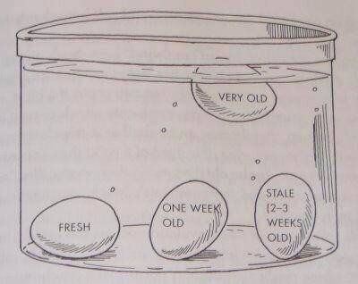 Sink Float Egg a Good Egg Will Sink to The